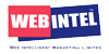 Web Intelligent Marketing Logo