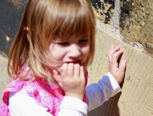 Autism, Emotional Reflexes and Sensory Processing