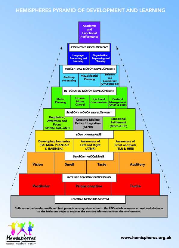 Hemispheres Pyramid of Development and Learning